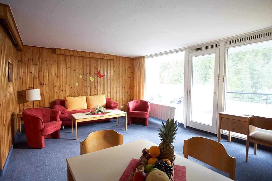 Ferienwohnung Harz Comfort Apartment Typ A Blick in den Wohnbereich