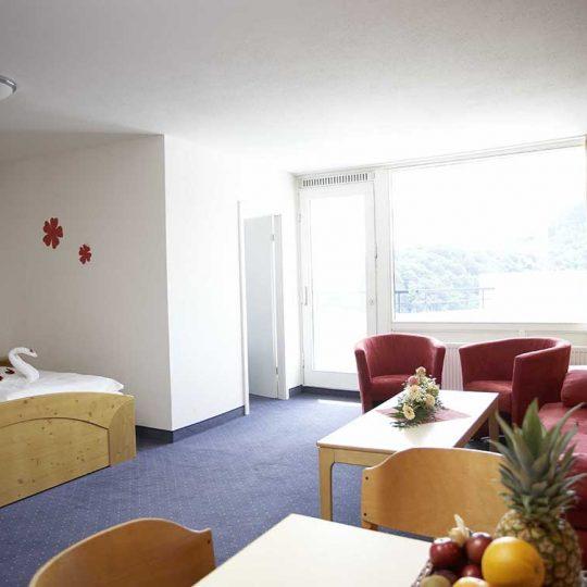 Ferienwohnung Harz Comfort Apartment Typ B Blick in den Wohnbereich