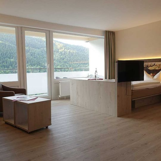 https://www.panoramic-hotel.de/wp-content/uploads/2016/11/Superior-Apartment-Harz-Aussicht_1126x750-540x540.jpg