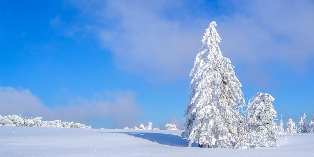 http://www.panoramic-hotel.de/wp-content/uploads/2016/12/verschneite-winterlandschaft-harz_1126x750-1080x540.jpg