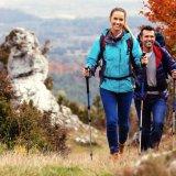 Wo kann man am besten im Harz Urlaub machen?