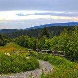 Tipps zum Wandern mit Kindern im Harz