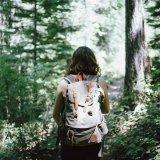 Sommerurlaub im Harz: Die besten Tipps