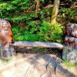 Wanderpass Harzer Wandernadel: Stempelsammeln im Harz